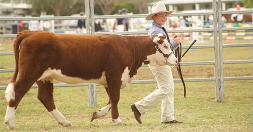 St Catherine's success at the Merriwa Cattle Show IMAGE