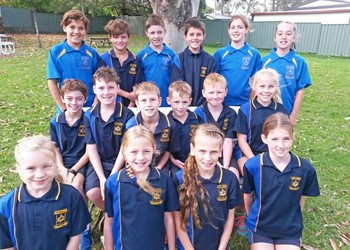 Success at diocesan cross country events IMAGE