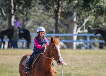Campdraft success for St Joseph's Merriwa students IMAGE