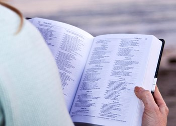 Approaching the word of God in the New Testament IMAGE