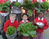Seeds to Supper at St Columban's