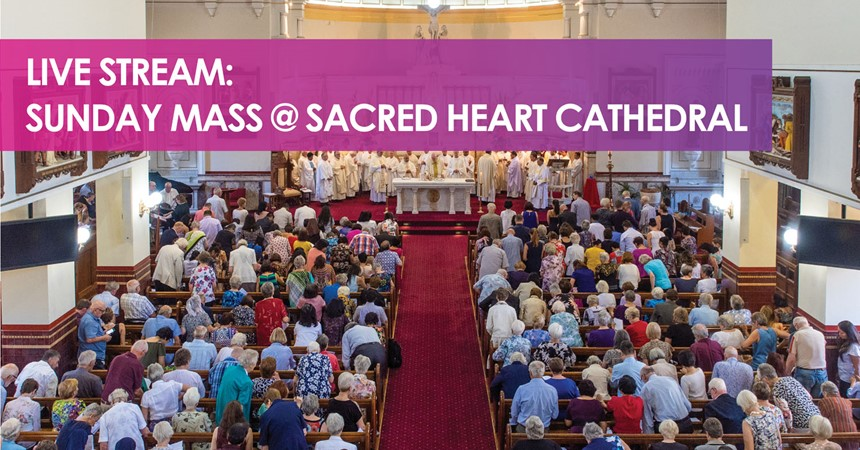 Live Stream Mass this Sunday IMAGE