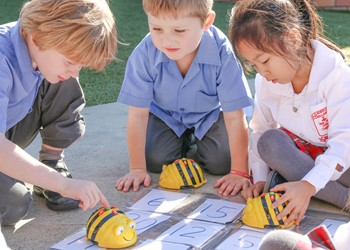 Primary Schools Science and Technology Project: Joint Venture with McIver Edubots IMAGE