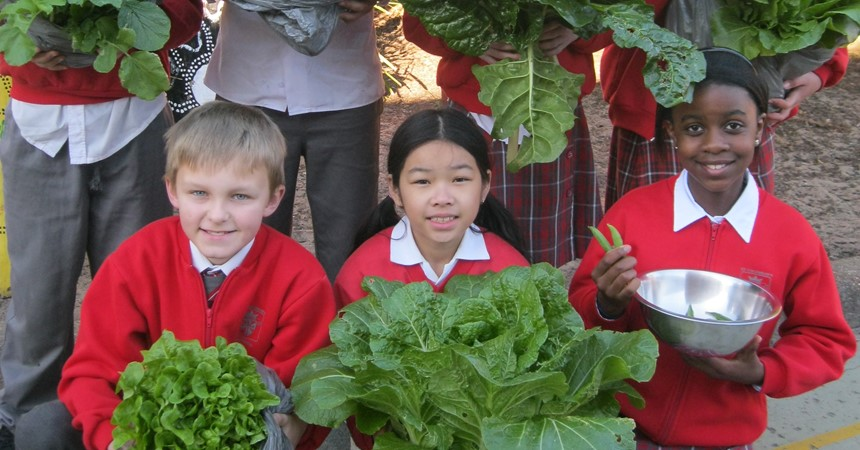 Seeds to Supper at St Columban's IMAGE