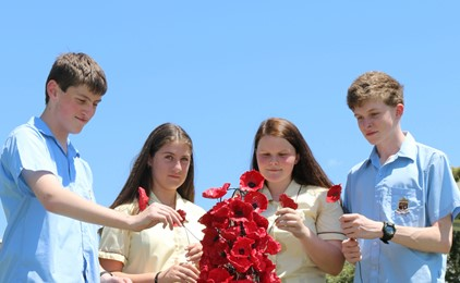 11 Schools Remember with Poppies  IMAGE