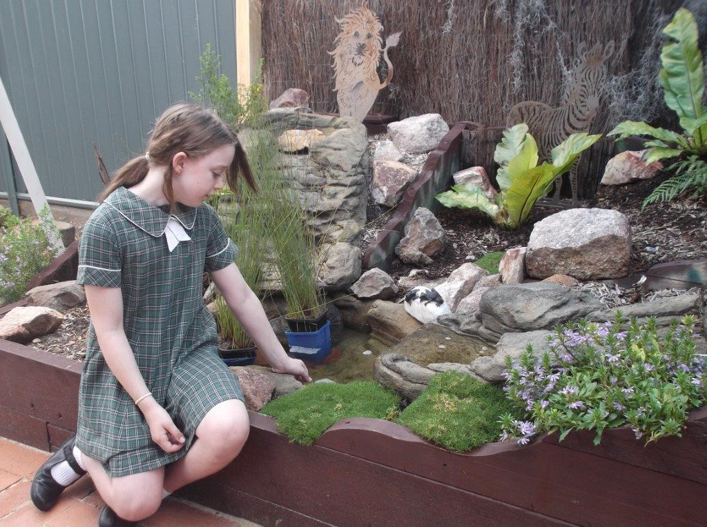 Why a Sensory Garden?